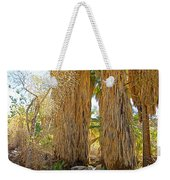 Washingtonian Fan Palms With Large Skirts In Andreas Canyon-ca Weekender Tote Bag