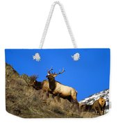 Watchful Bull Weekender Tote Bag
