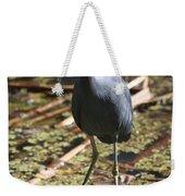 Watchful Little Blue Heron  Weekender Tote Bag
