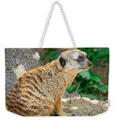 Watchful Meerkat Vertical Weekender Tote Bag