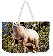 Watching The Valley Weekender Tote Bag