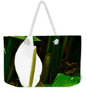 Water Arum In Park Across From Wat Phrathat Doi Suthep In Chiang Mai-thailand. Weekender Tote Bag