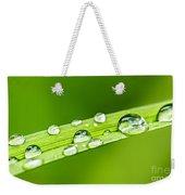 Water Drops On Grass Blade Weekender Tote Bag
