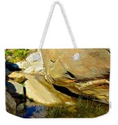 Water In Oasis On Borrego Palm Canyon Trail In Anza-borrego Desert Sp Campground-ca  Weekender Tote Bag