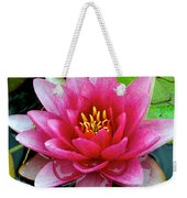 Water Lilly Weekender Tote Bag by Frozen in Time Fine Art Photography