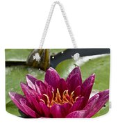 Water Lily Pictures 66 Weekender Tote Bag