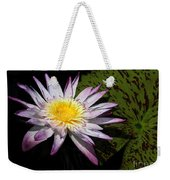 Water Lily With Lots Of Petals Weekender Tote Bag