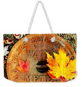 Water Meter Cover With Autumn Leaves Abstract Weekender Tote Bag