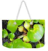Water Plants 1 Weekender Tote Bag