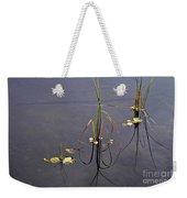 Water Scene Weekender Tote Bag