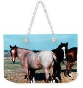 Watercolor Mustangs Weekender Tote Bag