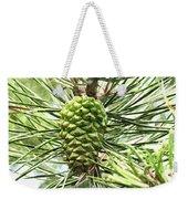 Watercolor Of Ripening Pine Cone Weekender Tote Bag
