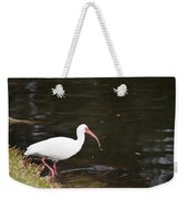 Water's Great Weekender Tote Bag