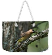 Waxwing Lunchtime Weekender Tote Bag