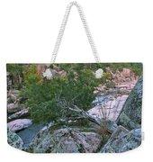 Weathered Cedar Overlooking The Castor River Weekender Tote Bag