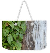 Weathered Tree Trunk With Vines Weekender Tote Bag