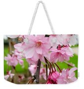 Weeping Cherry Blossoms Weekender Tote Bag