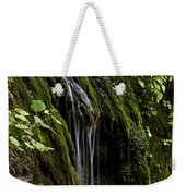 Weeping Rock Weekender Tote Bag