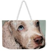 Weimaraner Dog Art - Forgive Me Weekender Tote Bag by Sharon Cummings