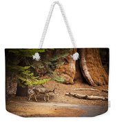 Welcome Home - Sequoia National Forest Weekender Tote Bag
