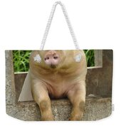 Well Hello There Weekender Tote Bag by Bob Christopher
