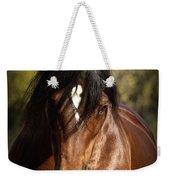 Welsh Cob Stallion Weekender Tote Bag