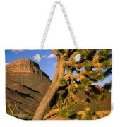 West Grand Canyon Weekender Tote Bag