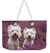 West Highland Terrier Dogs In Heather Weekender Tote Bag