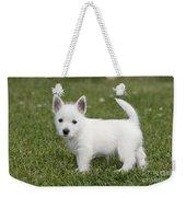 West Highland White Terrier Puppy Weekender Tote Bag