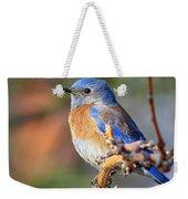 Western Bluebird Profile Weekender Tote Bag
