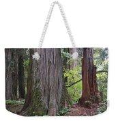 Western Red Cedar Grove Weekender Tote Bag