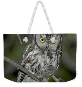 Western Screech Owl Weekender Tote Bag