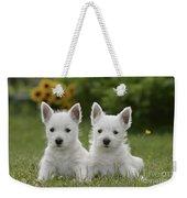 Westie Puppies Weekender Tote Bag