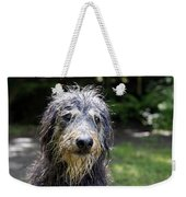 Wet Dog Weekender Tote Bag