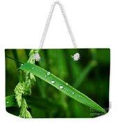 Wet Grasses Weekender Tote Bag