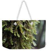 Wet Redwood Branches Weekender Tote Bag