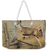 What Fence Weekender Tote Bag