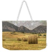 What The Hay Weekender Tote Bag by Juli Scalzi