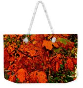 Where Has All The Red Gone - Autumn Leaves - Orange Weekender Tote Bag