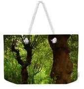 Wherever The Path May Lead Weekender Tote Bag