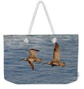Whimbrels Flying Close Weekender Tote Bag