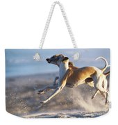 Whippet Dogs Fighting Weekender Tote Bag