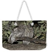 Whiskered Screech Owls Weekender Tote Bag
