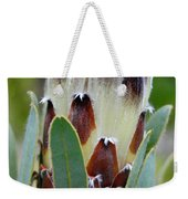 White And Brown Protea  Weekender Tote Bag