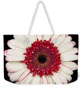 White And Red Gerbera Daisy Weekender Tote Bag