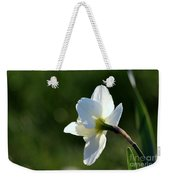 White Daffodil Rear Profile Weekender Tote Bag