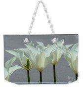 White Early Dawn Tulips Black Border Weekender Tote Bag
