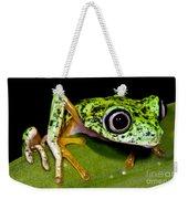 White-eyed Leaf Frog Weekender Tote Bag