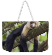 White-faced Capuchin Costa Rica Weekender Tote Bag