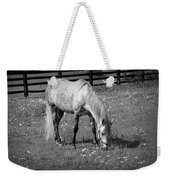 White Horse In A Pasture Among Daisy Flowers Weekender Tote Bag